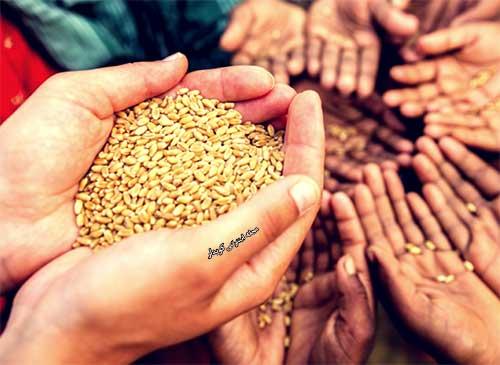 504 واژه ضروری انگلیسی - معنی کلمه famine با استفاده از عکس و تصاویر